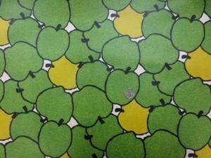 ラミネート 生地 BIGAPPLE う早この布 グリーン コットンこばやし ビニルコーティング 110cm幅 [BN559]