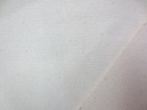 6号帆布 生成 キバタ 白樺6号 スポット商品です。在庫のみ