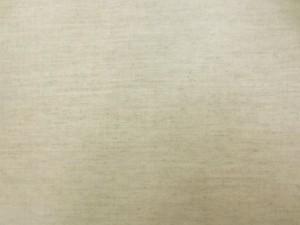 ラミネート 生地 綿麻 生成 ビニルコーティング 114cm幅 [BN555]